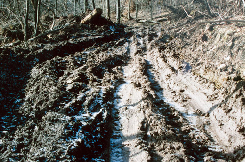 Eroded tracks left by the Helseling of Plummer's Hollow, winter of 1991-92