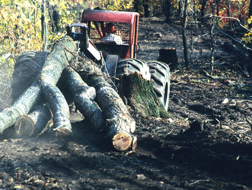 A Helsel skidder hauling logs out of Plummer's Hollow, 1991